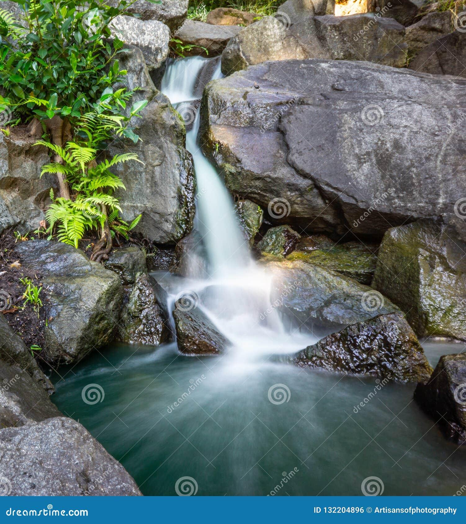 Waterval in het meest forrest en de rotsen