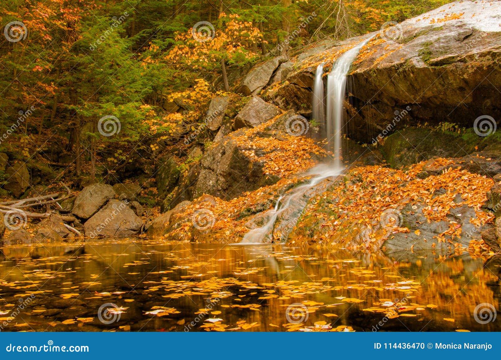 Waterval op gouden vijver