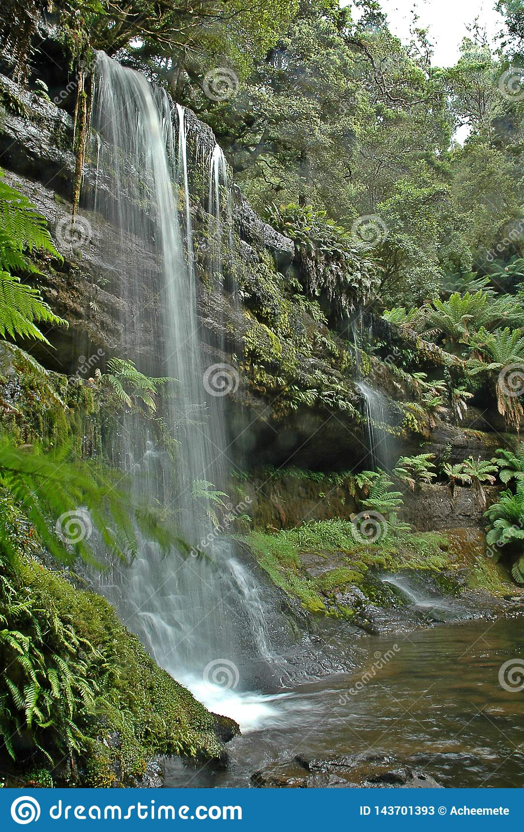 Waterval in Tasmanige