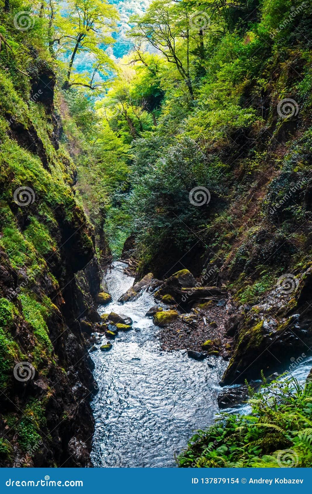 Watervalreus Oostelijk Abchazië Dichtbij de stad van Tkvarcheli Akarmaradistrict