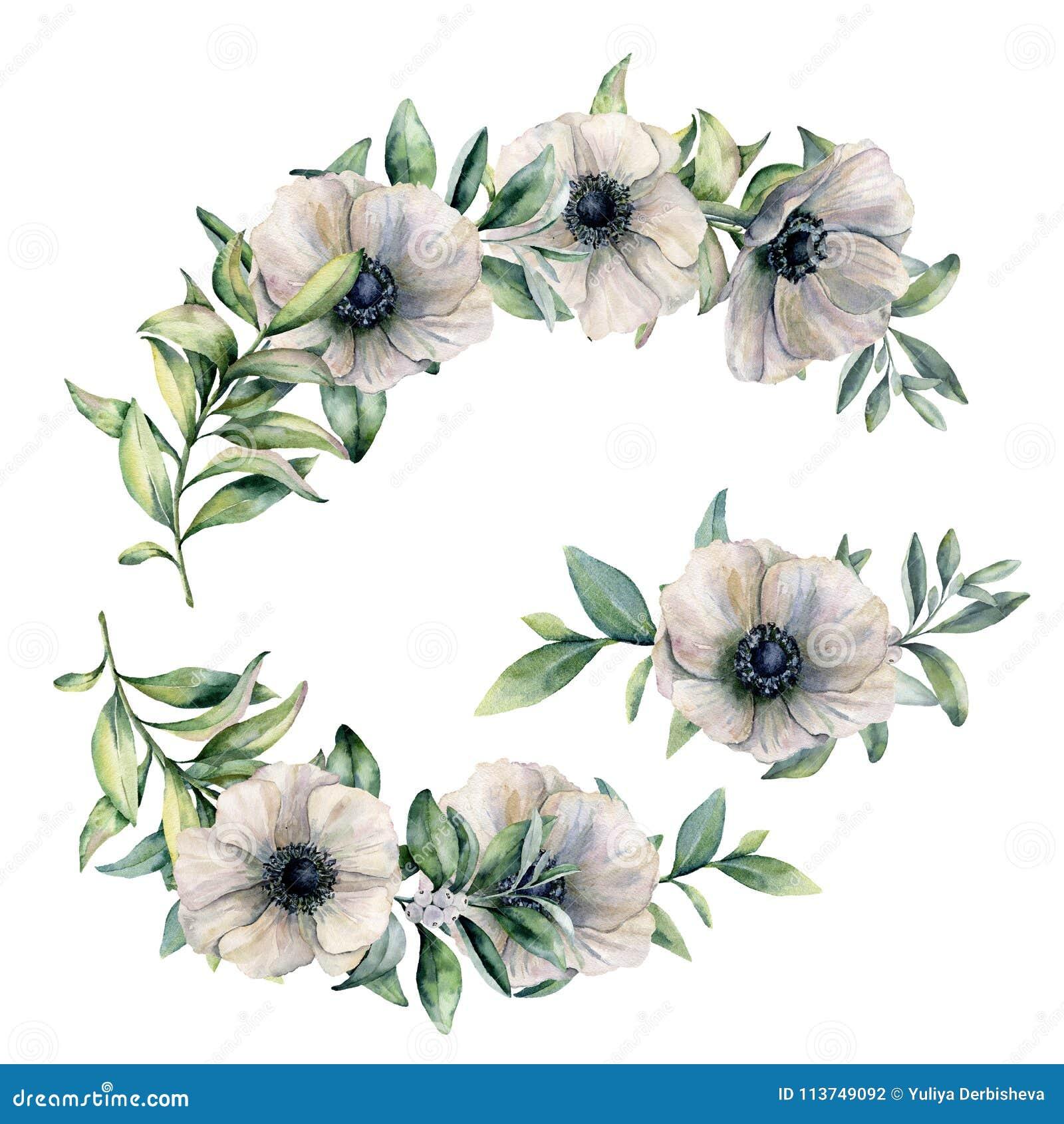 Waterverf bloemensamenstelling met anemoon De hand schilderde witte die bloemen en eucalyptusbladeren op wit worden geïsoleerd