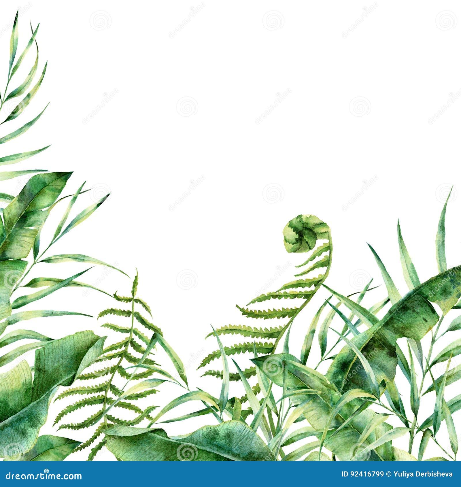 Waterverf exotische bloemengrens De hand schilderde tropisch kader met palmbladeren, varentak, banaan en magnolia