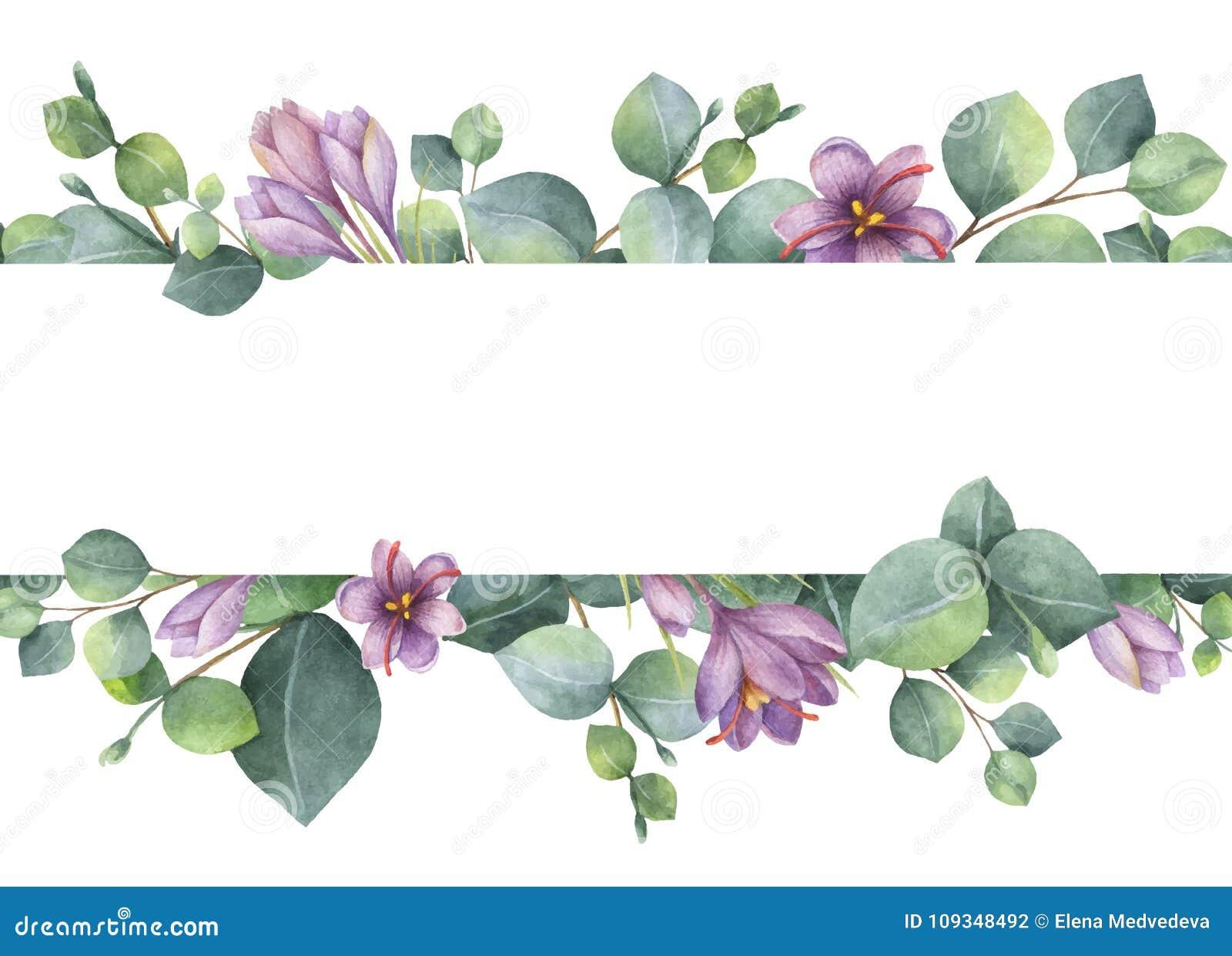 Waterverf vectorkroon met groene eucalyptusbladeren, purpere bloemen en takken