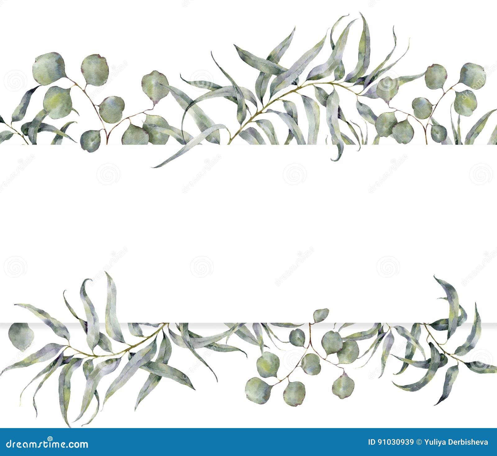 Waterverfkaart met eucalyptustak De hand schilderde bloemenkader met ronde bladeren van zilveren geïsoleerd dollareucalyptus