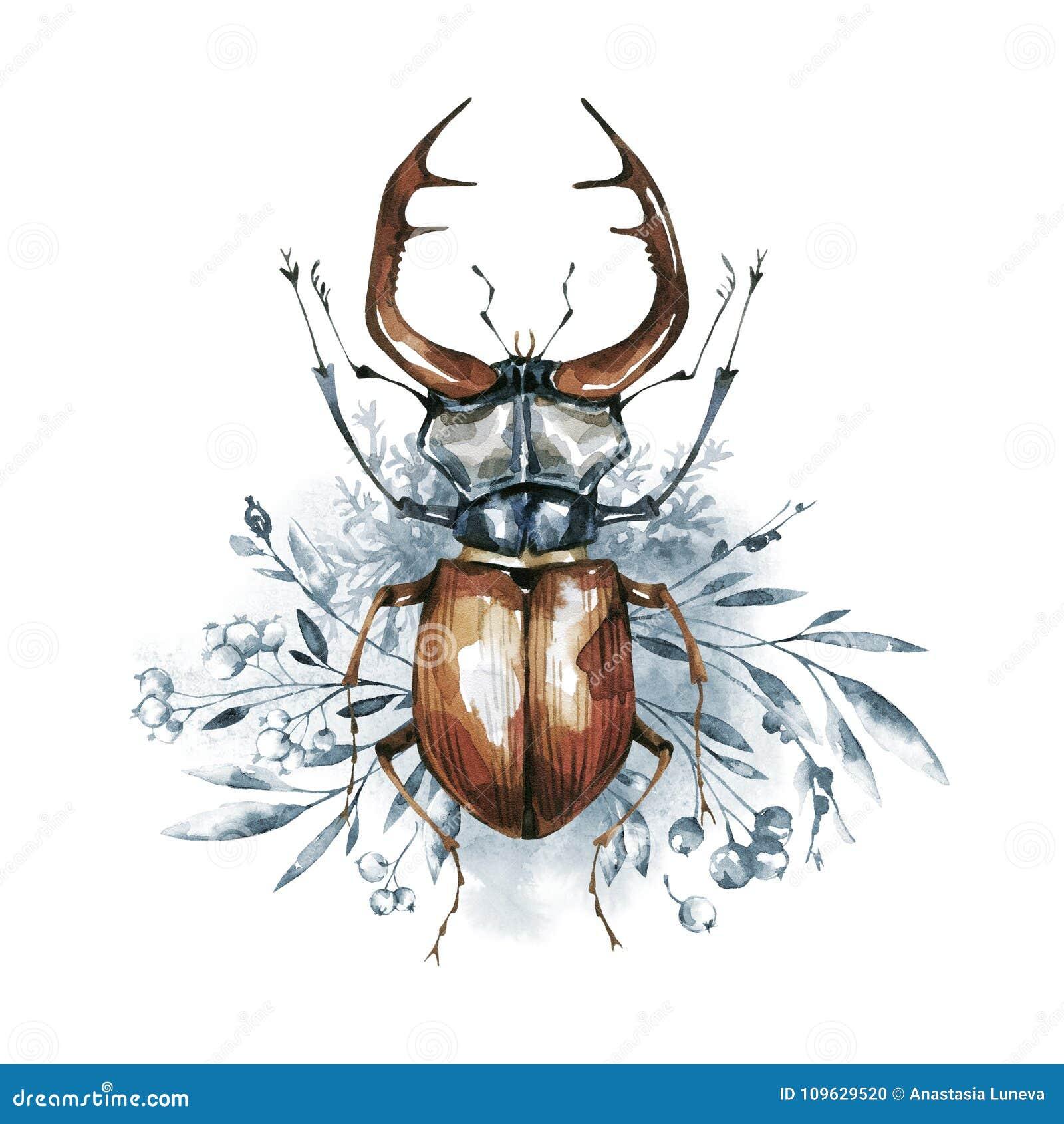 Waterverfkever met hoornen op een bloemenachtergrond Dier, insecten Magische vlucht Kan op T-shirts, zakken worden gedrukt