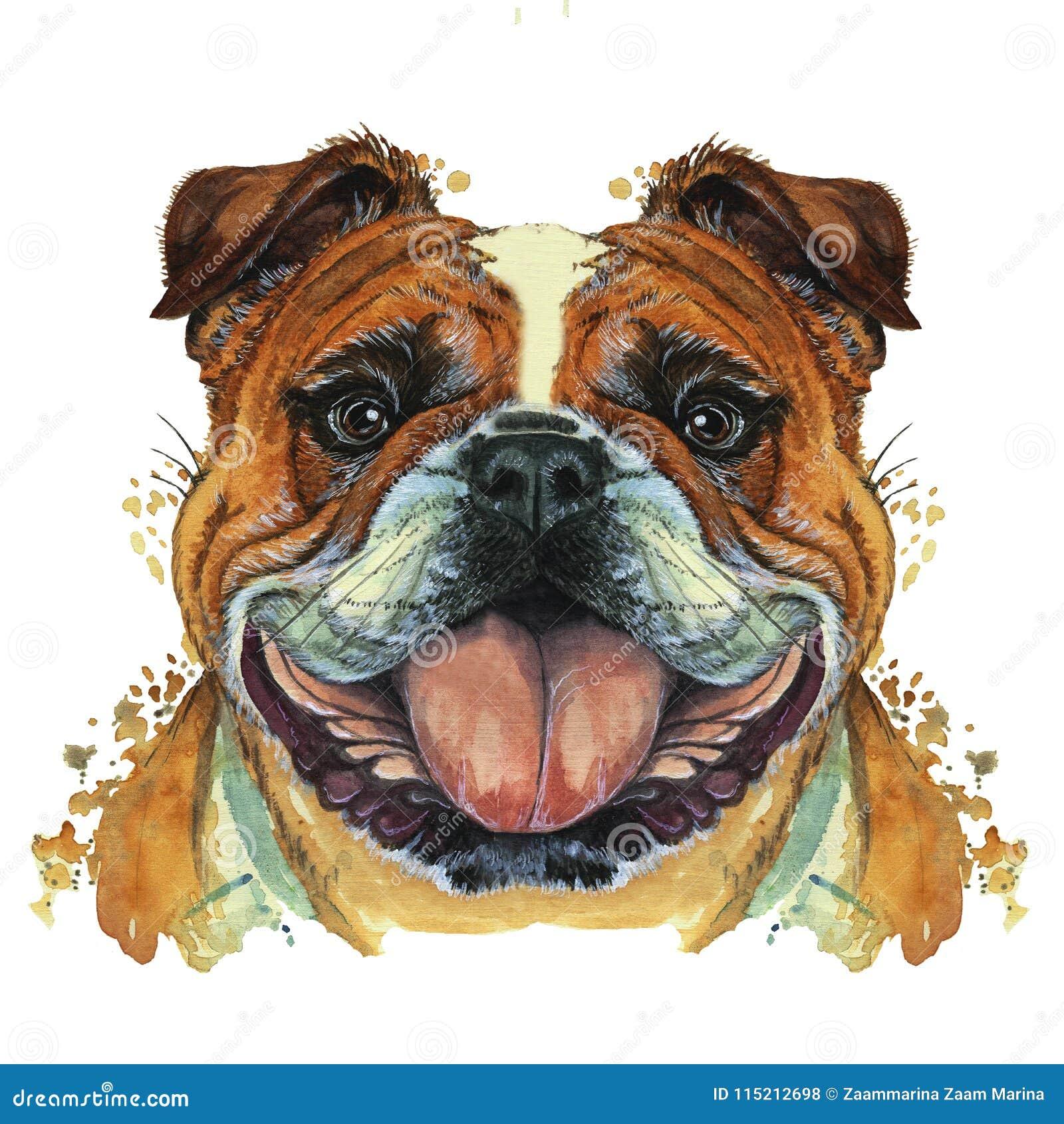 Waterverfprintshop, druk op het thema van het ras van honden, zoogdieren, dieren, kweekt Engelse buldog, buldog, portret, kleur r