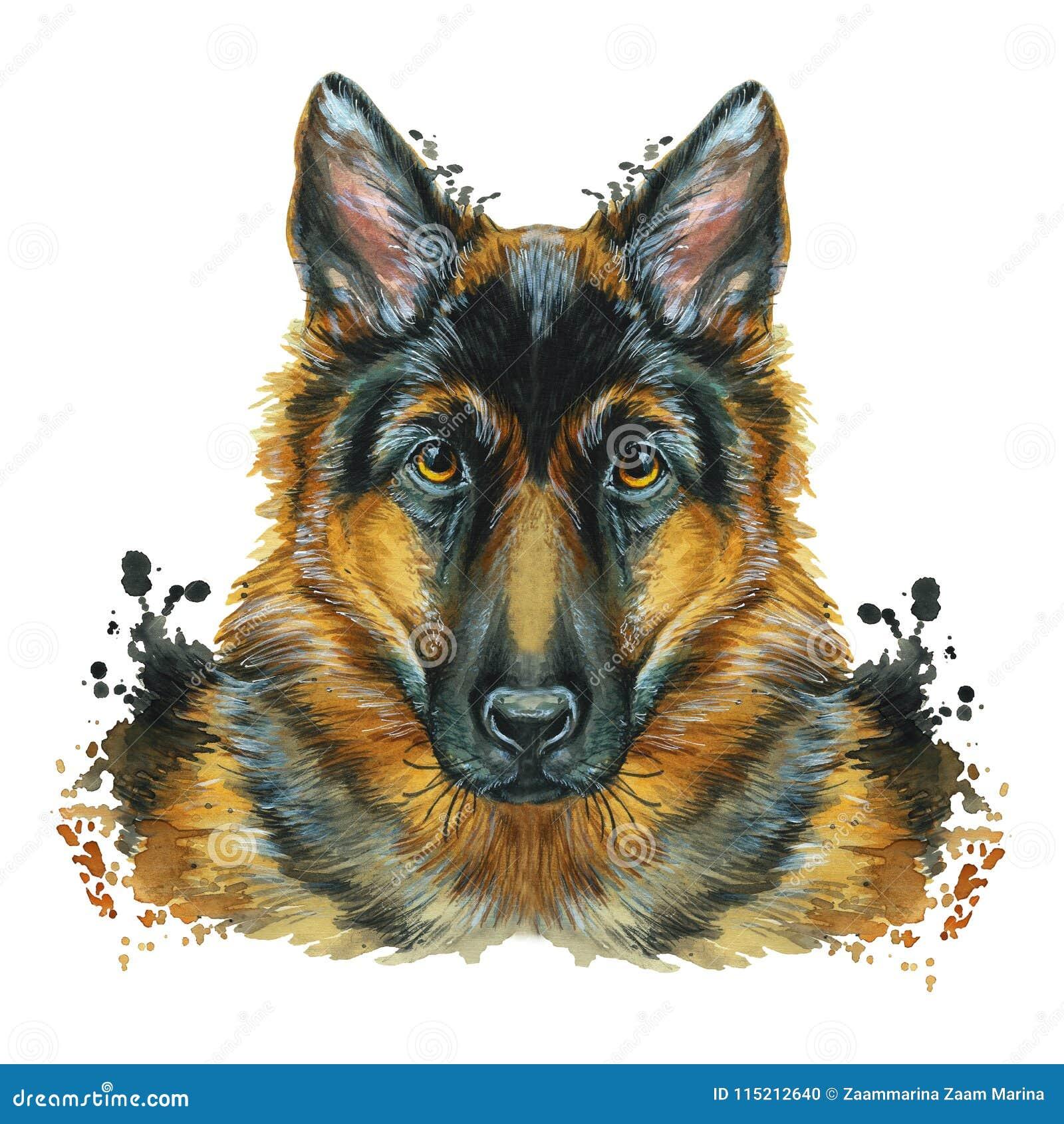 Waterverfprintshop, druk op het thema van het ras van honden, zoogdieren, dieren, rassenduitse herder, portret, kleuren rood-zwar