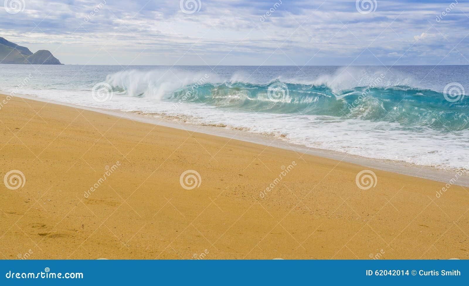 Wave breaks on Pacific Ocean beach