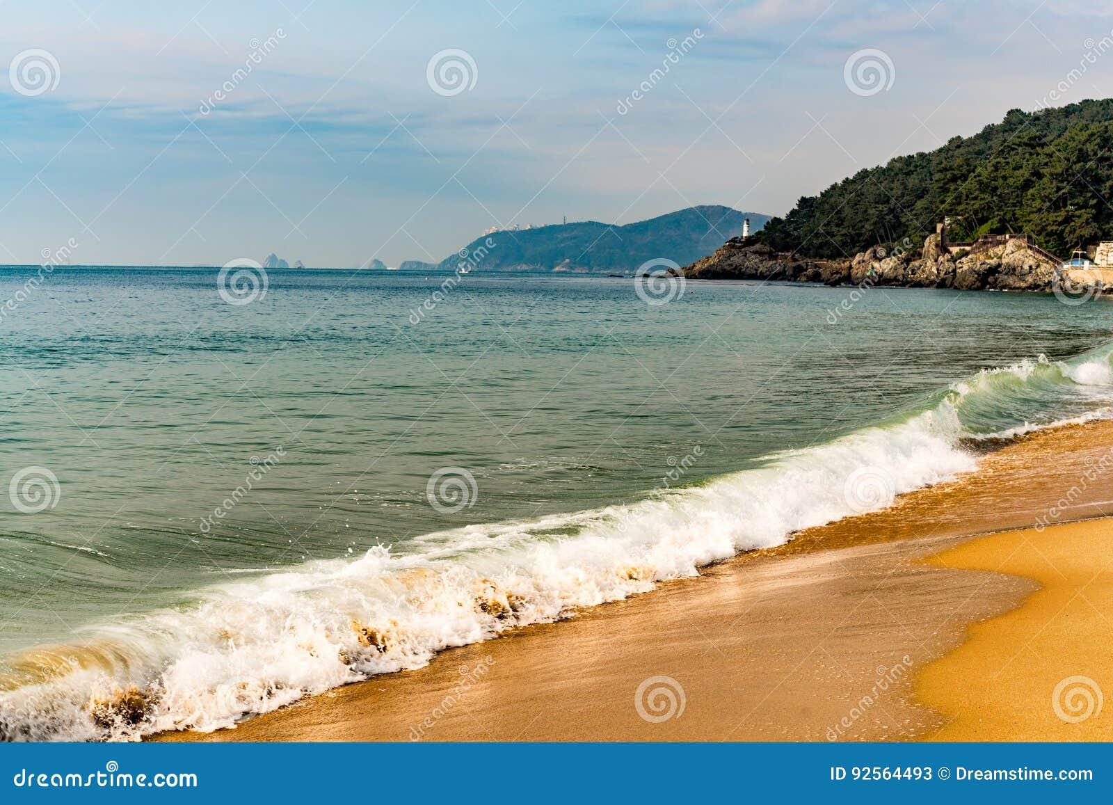 Wave su una spiaggia