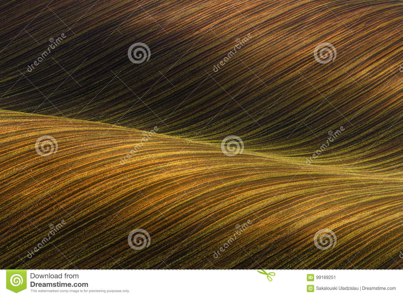Waved Cultivated field with beautiful light-shadows chiaroscuro. Rustic autumn landscape in brown tones. Striped undulating abst