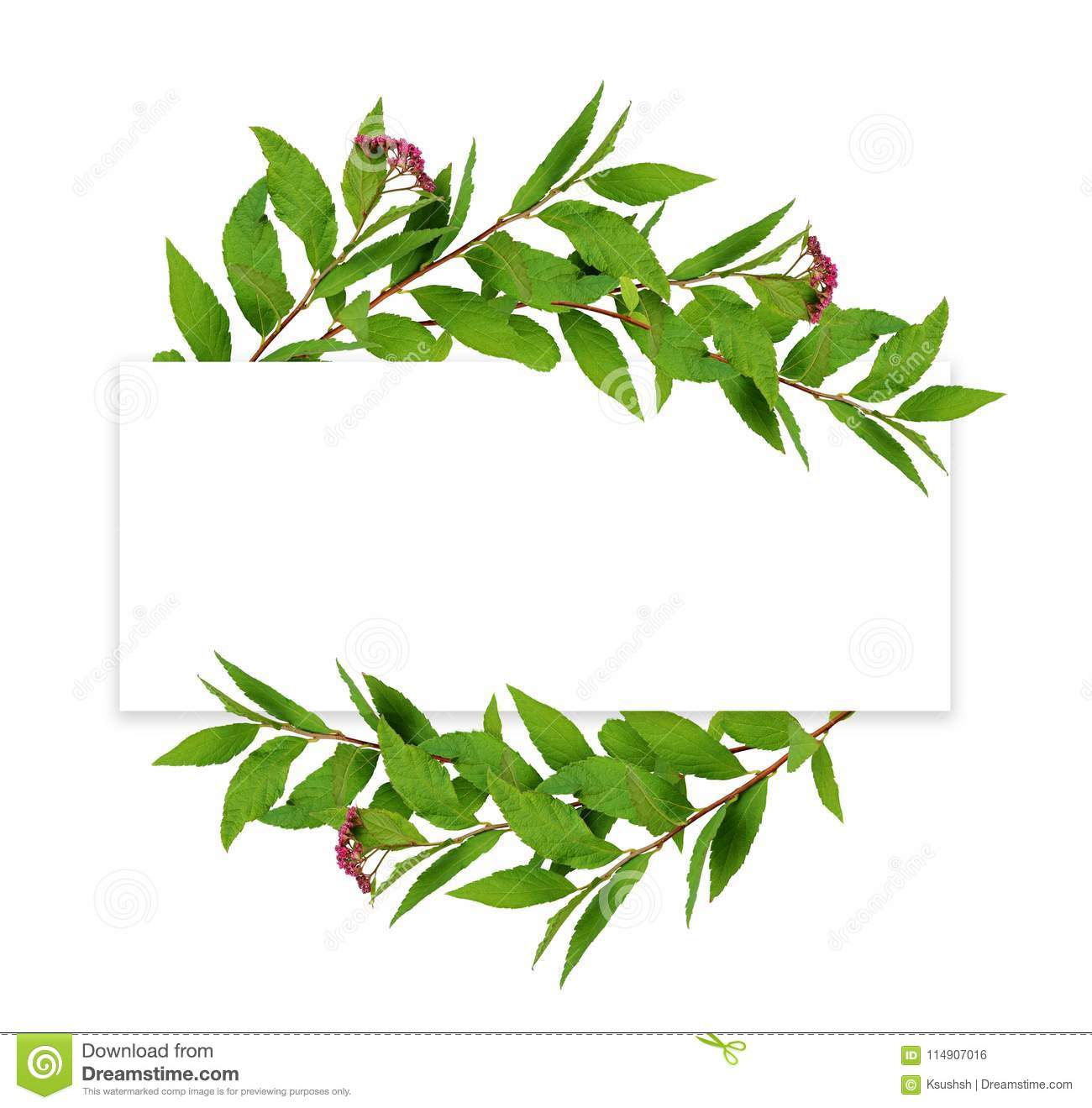 Waved Frame From Green Leaves And Small Pink Flowers With Red Ro