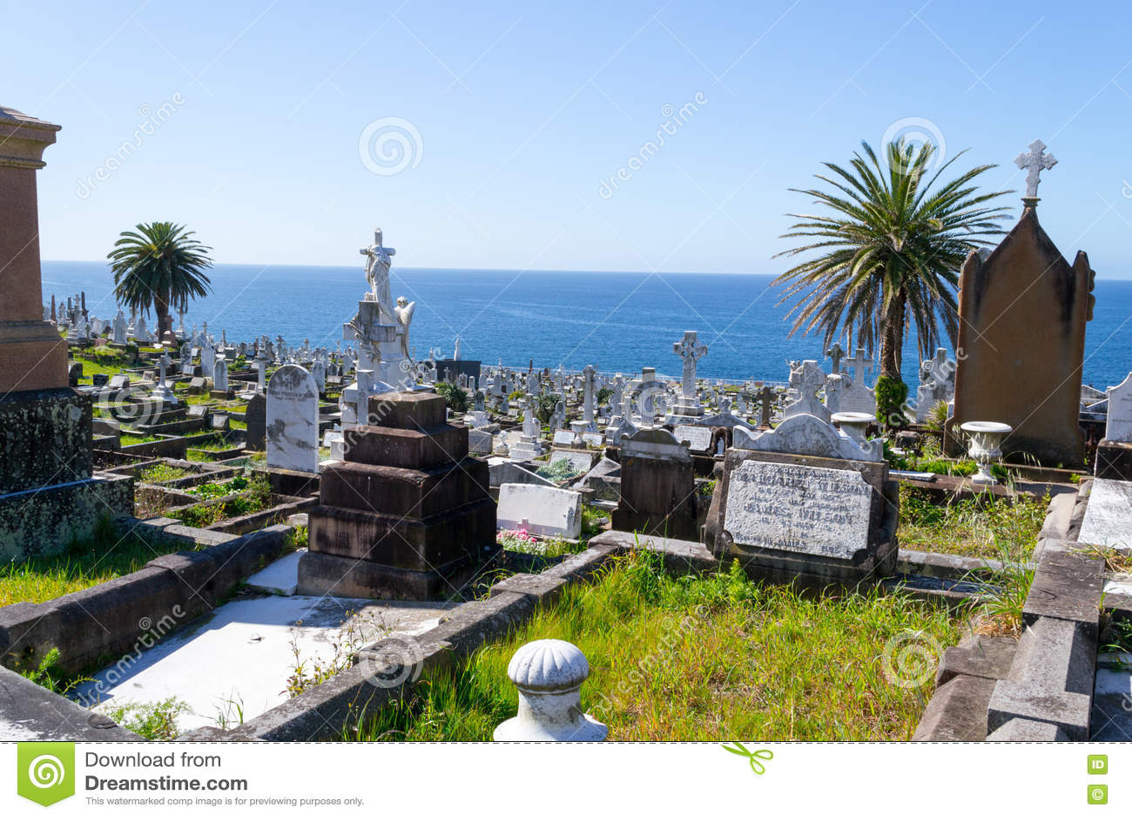Waverley cmentarz w Sydney