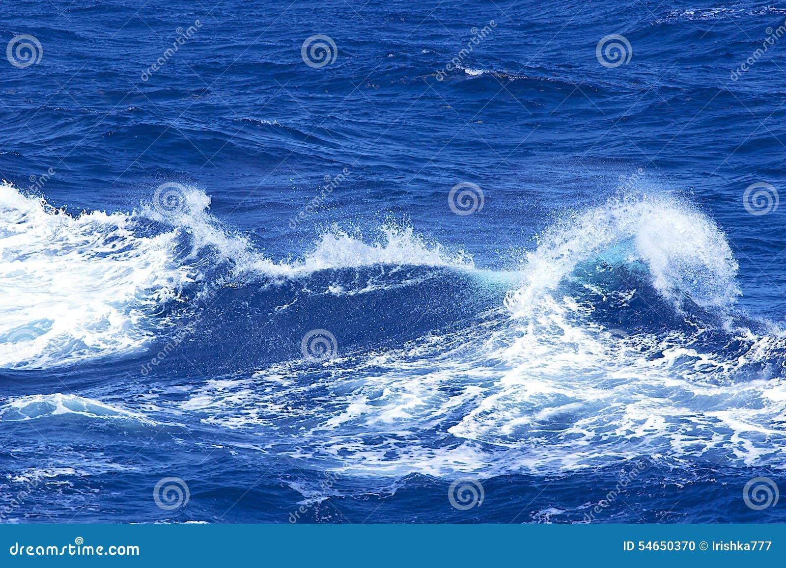 Waves för textur för hav för illustrationsdesign naturliga