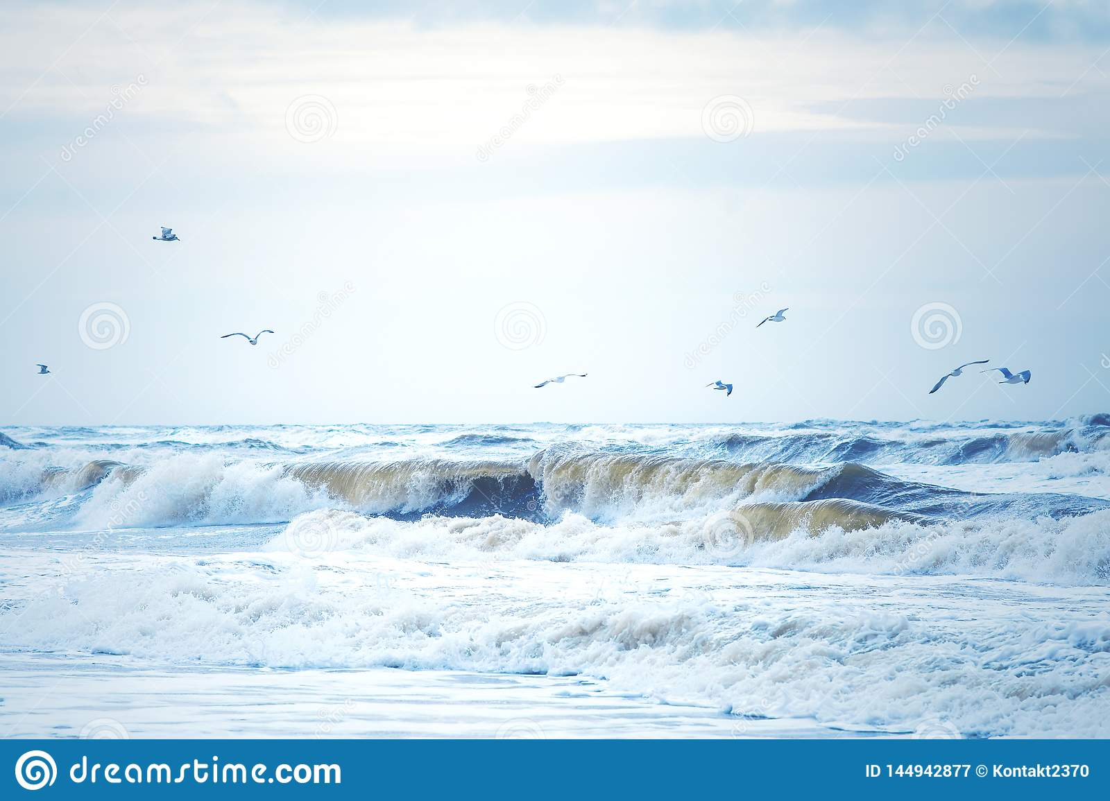 Waves at the north sea in Denmark