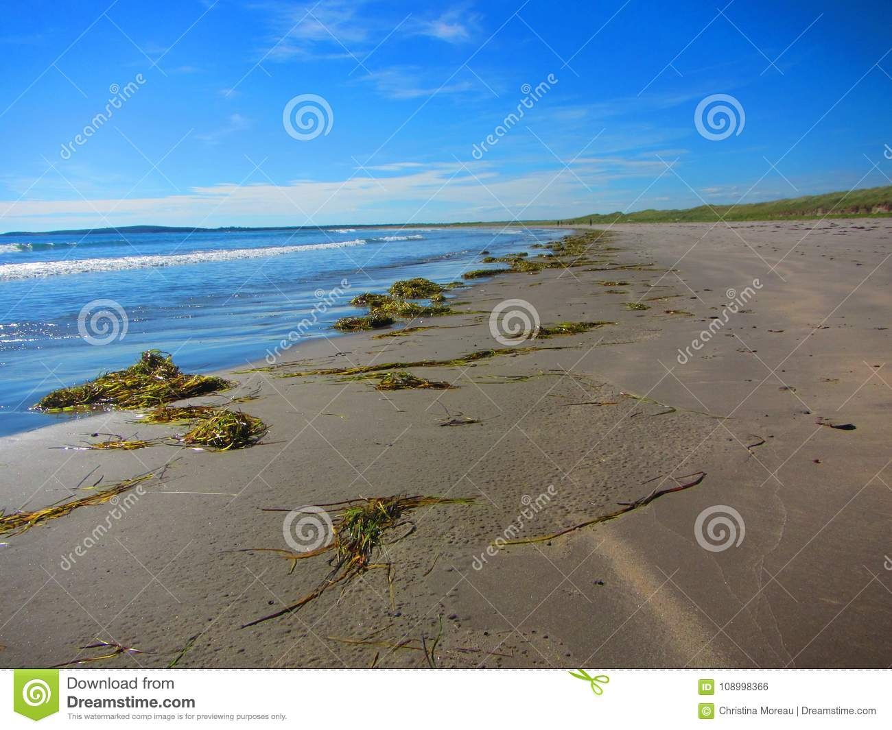 Waves Wash Onshore At A Beach Stock Photo - Image of compact