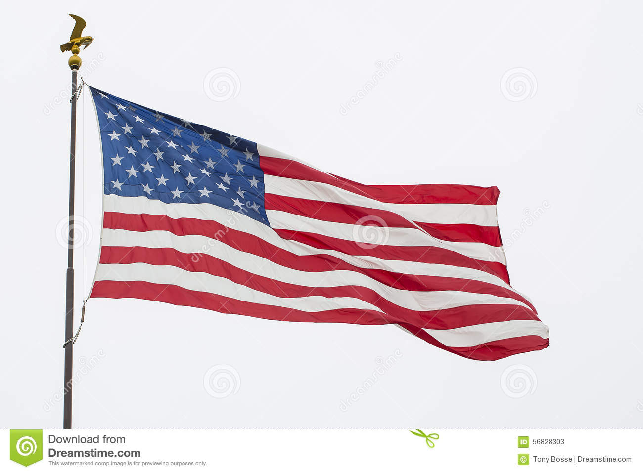 Waving American Flag And Eagle Pole, Isolated