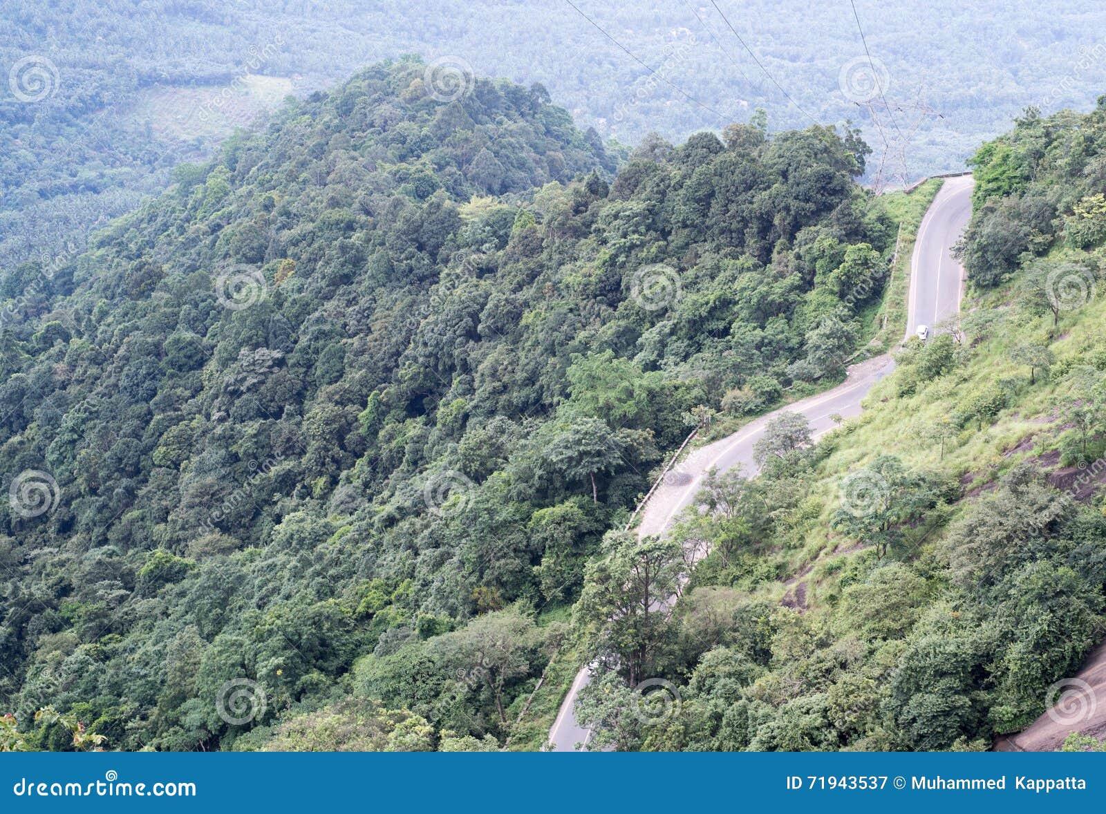 Wayanad, Керала, Индия Дорога с много петлями на горе churam извилистой дороги внутри леса