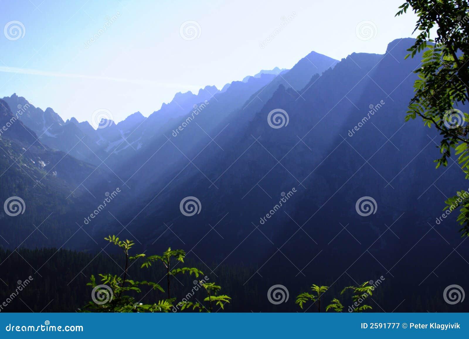 Wazige ochtend in hoge tatras