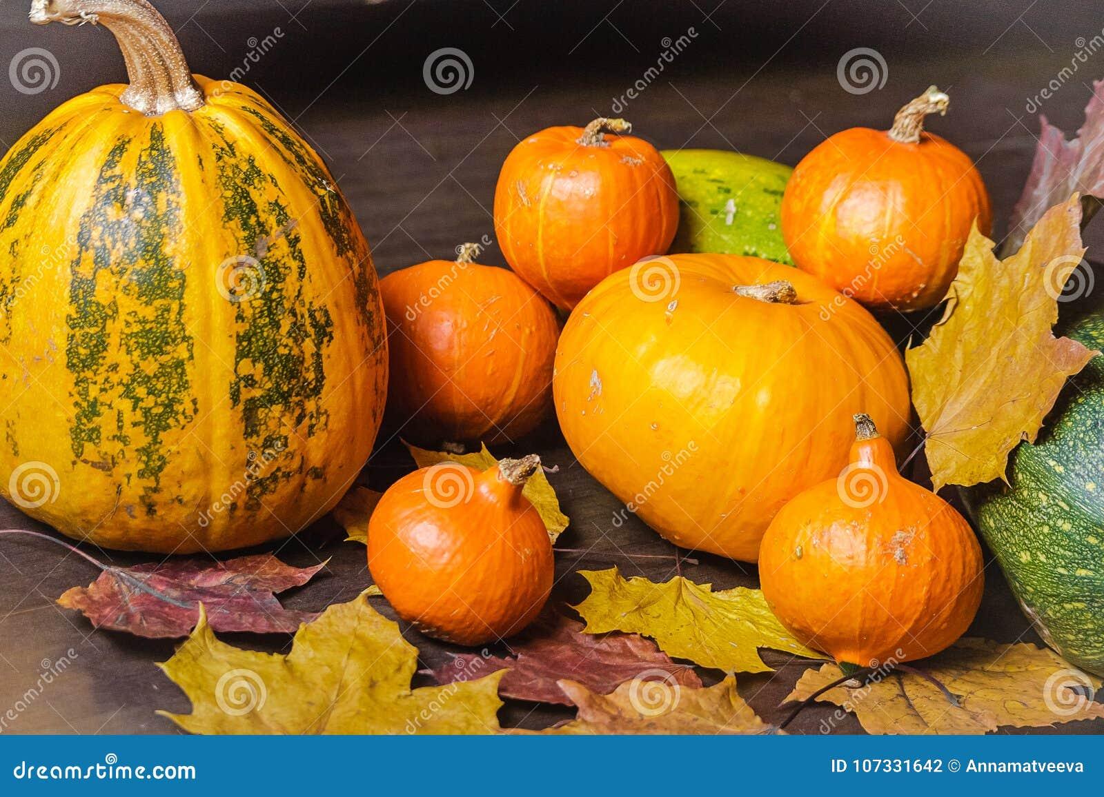 Wciąż życie jesieni Pomarańczowa bania Z Suchymi liśćmi