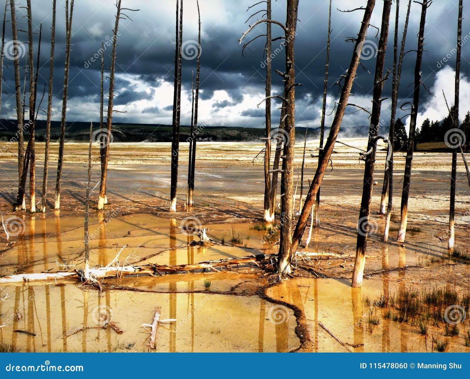 Wciąż Stojący Po ogienia i deszczu