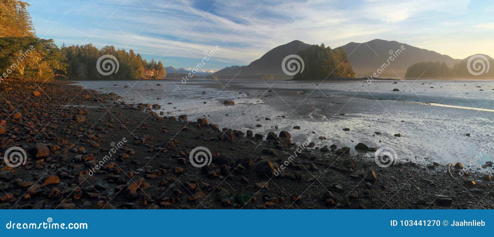 Wczesnego Poranku światło przy Tofino wpustem Mudflats, Tofino, Vancouver wyspa, Kanada