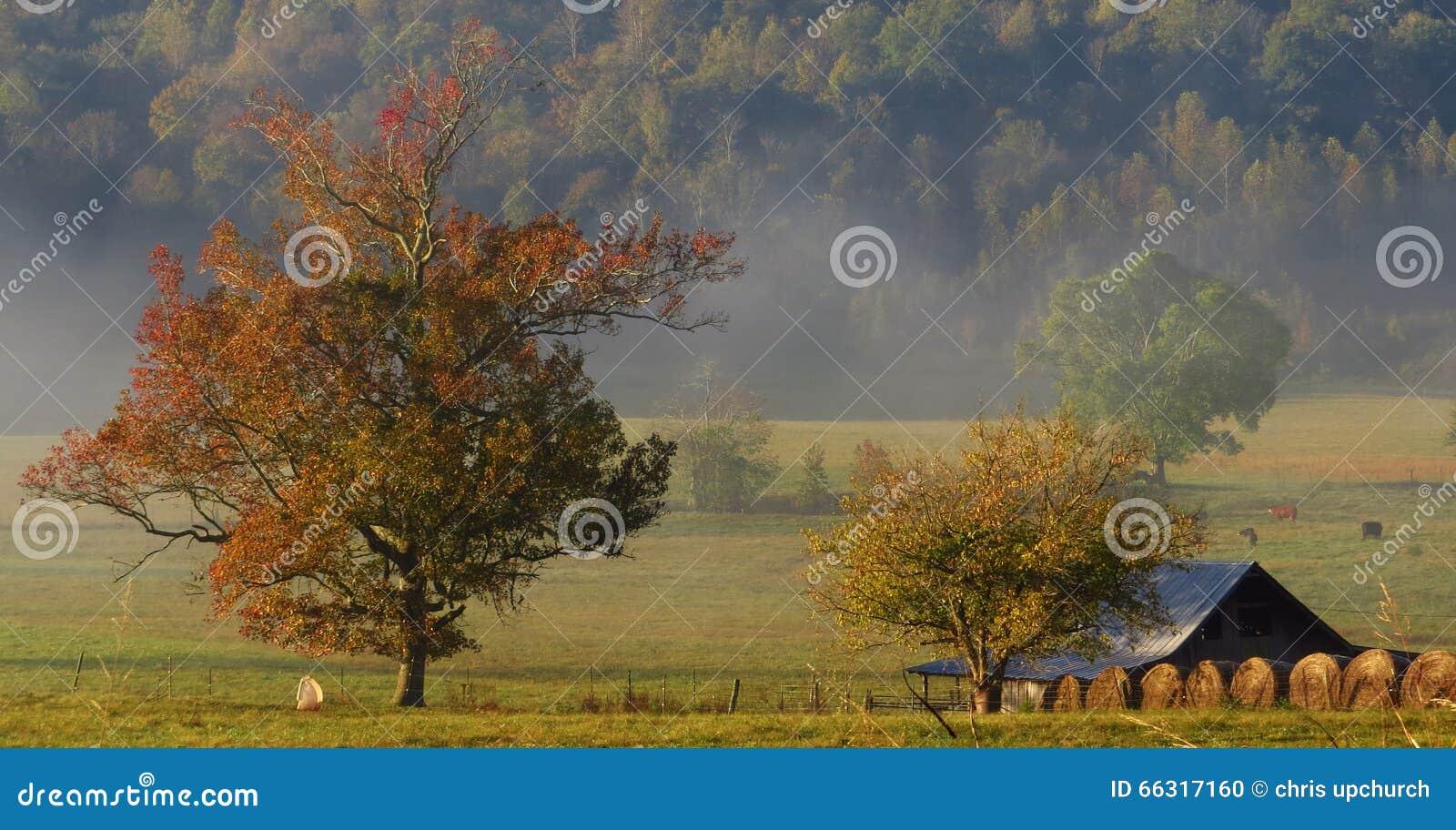 Wczesnego poranku spadku gospodarstwo rolne