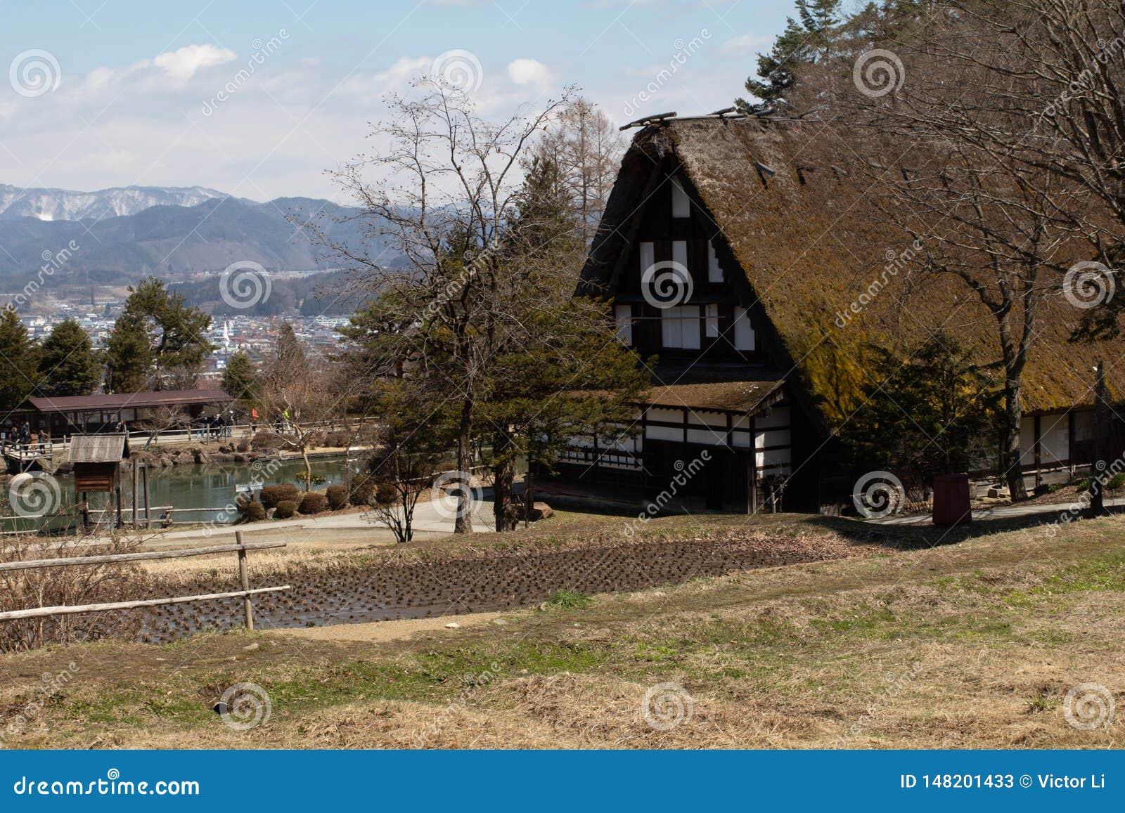 Wczesnej wiosny sceniczna krajobrazowa fotografia tradycyjny pokrywający strzechą dachu dom w wiejskim Japonia obok ryżowego irla