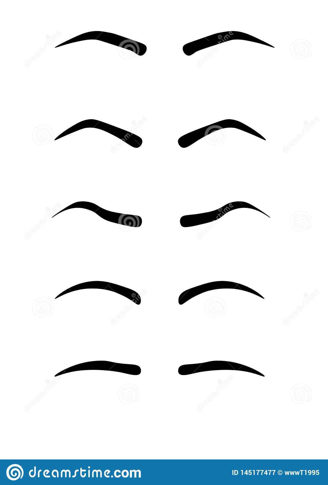 Web Eyebrow Shapes  Various Types Of Eyebrows  Classic Type