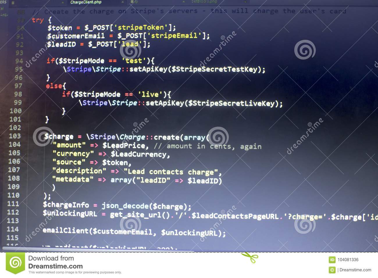 Web Developer PHP Code Close Up  Charging Customer Using