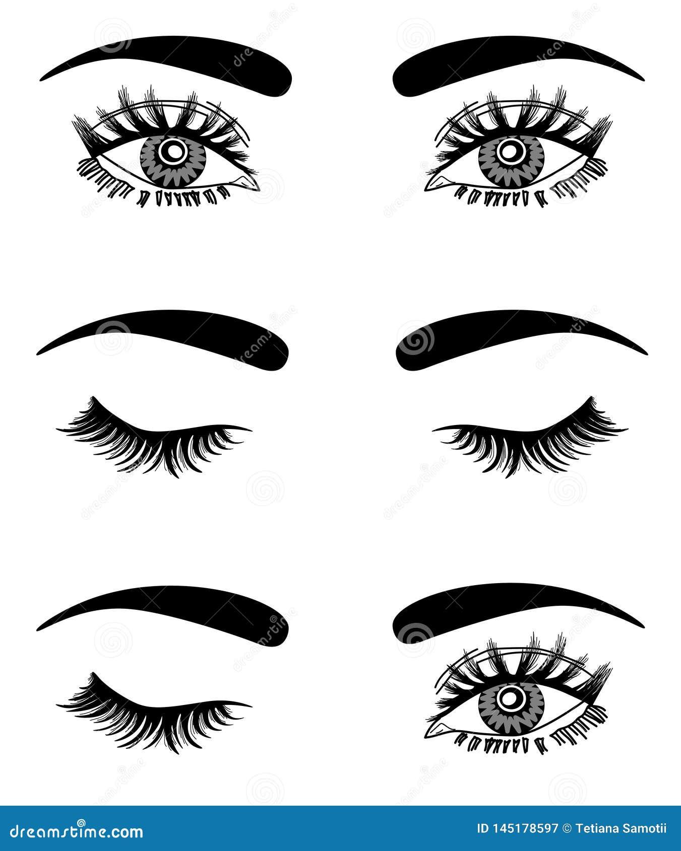 Web Illustratie van het sexy luxueuze oog van de vrouw met volkomen gestalte gegeven wenkbrauwen en volledige zwepen Hand-drawn I