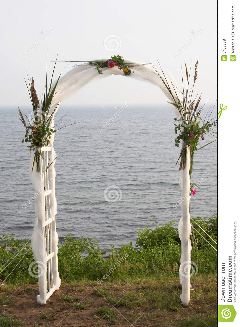 Beach Wedding Arch Pictures