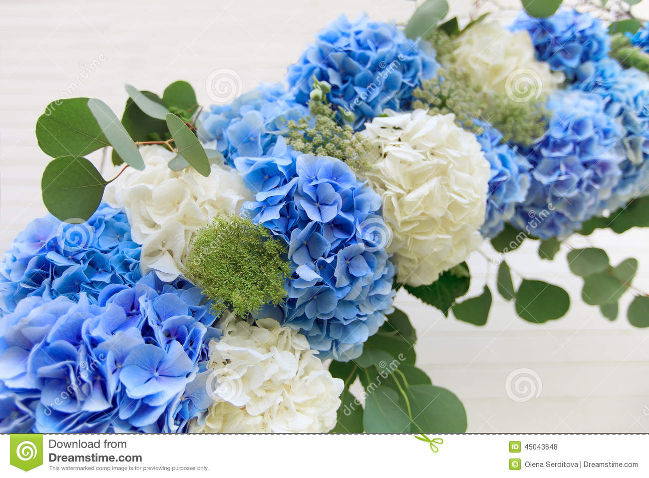 Wedding arch from white and blue flowers stock photo image 45043648 arch background blue wedding white dhlflorist Gallery