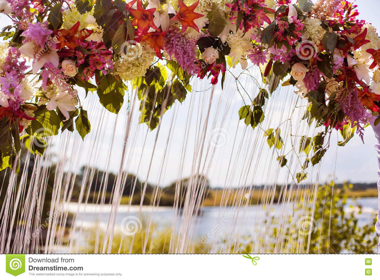 Wedding Arch Of White, Red, Yellow, Purple, Blue Flowers Stock Image ...