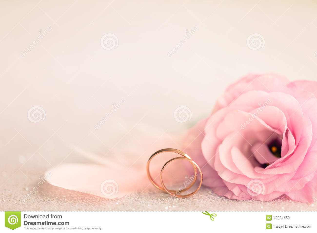 Wedding Stock Photos - 834,828 Images
