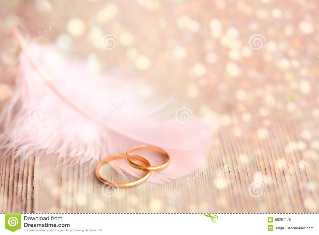 Wedding Background With Gold Rings, Pink Feather And ...