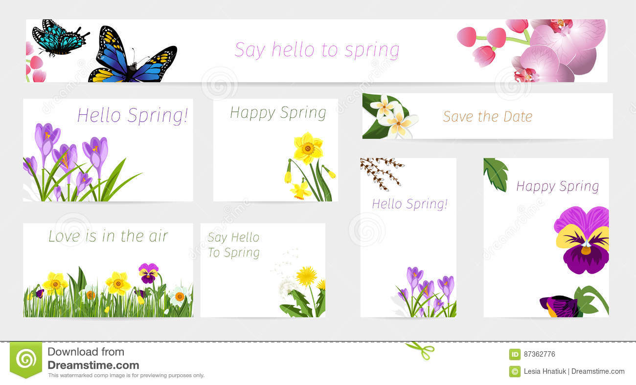 Wedding Or Birthday Invitation Spring Flower Celebration Cards Vector