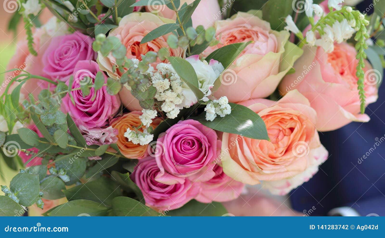 Wedding Bouquet Of Peach Roses By David Austin Single Head Pink Rose Aqua Eucalyptus Ruscus Gypsophila Stock Photo Image Of Bouquet Fine 141283742