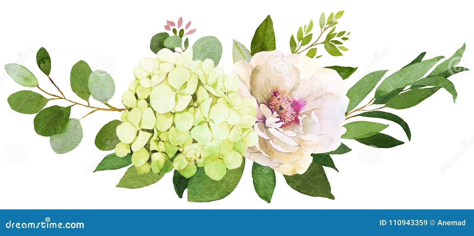 Wedding Bouquet. Peony, Hydrangea And Rose Stock Illustration ...