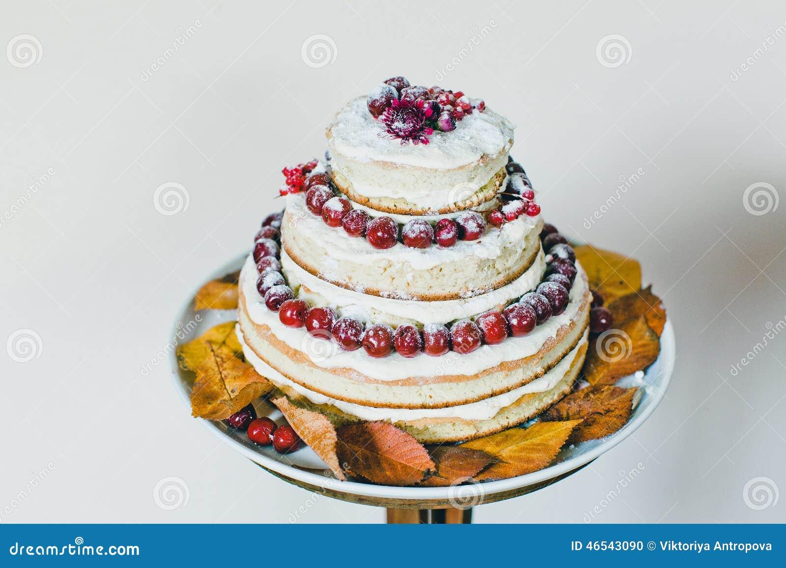 Wedding cake stock photo. Image of cherries, autumn, cakes - 46543090