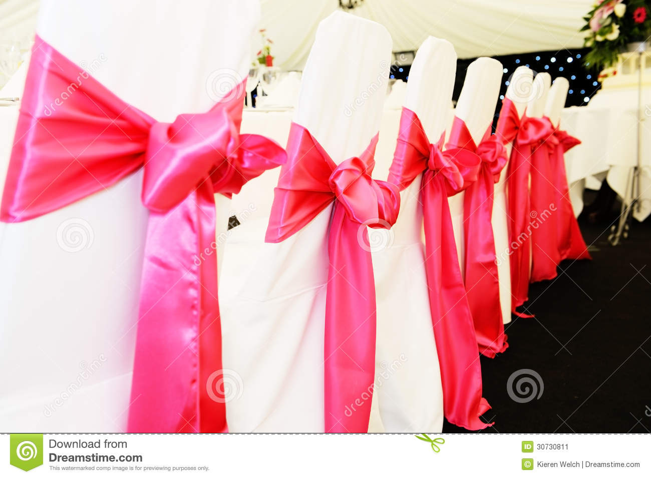 wedding chair covers stock image image of cloth pink 30730811