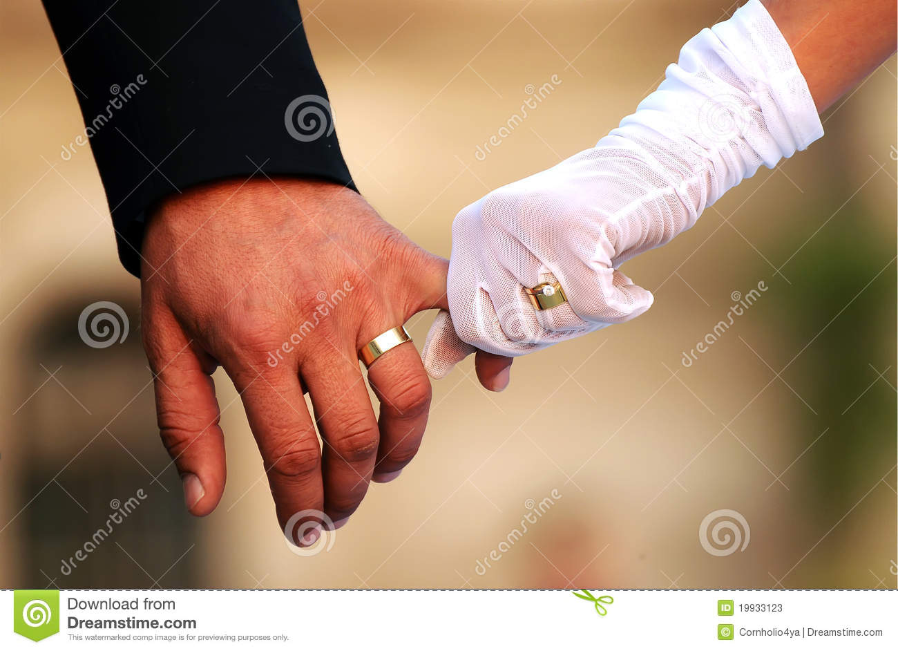 Wedding Couple Holding Hands Stock Image - Image: 19933123