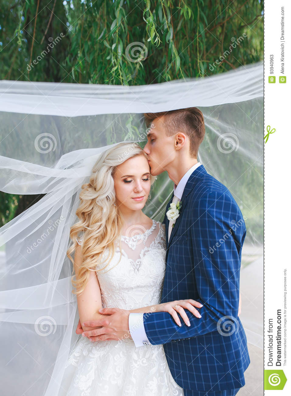 865db409868 Wedding couple kissing covered veil .Wedding romantic couple is hugging  each other. Beauty bride