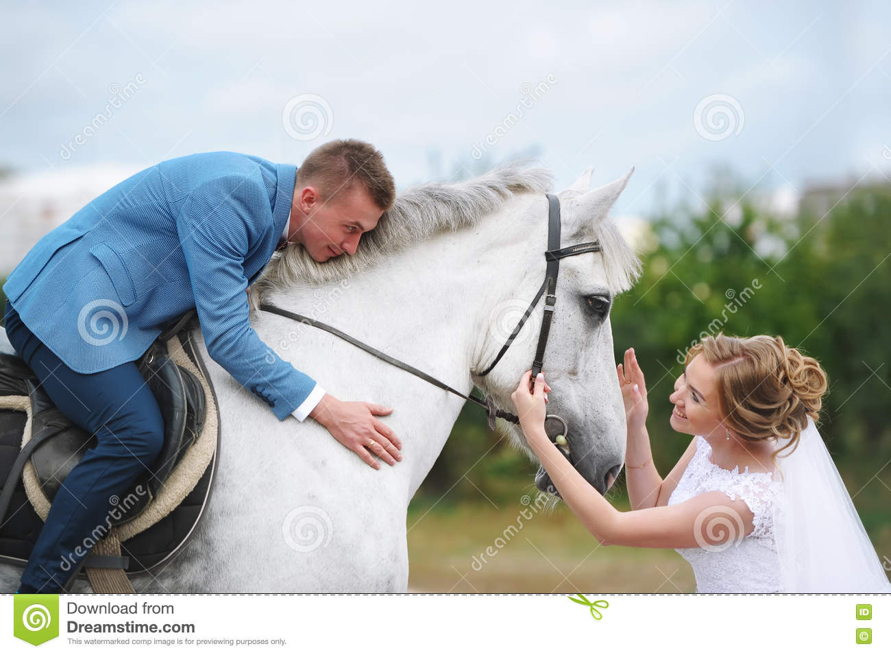 Wedding Couple With White Horse Stock Image Image Of Marriage Green 79168337