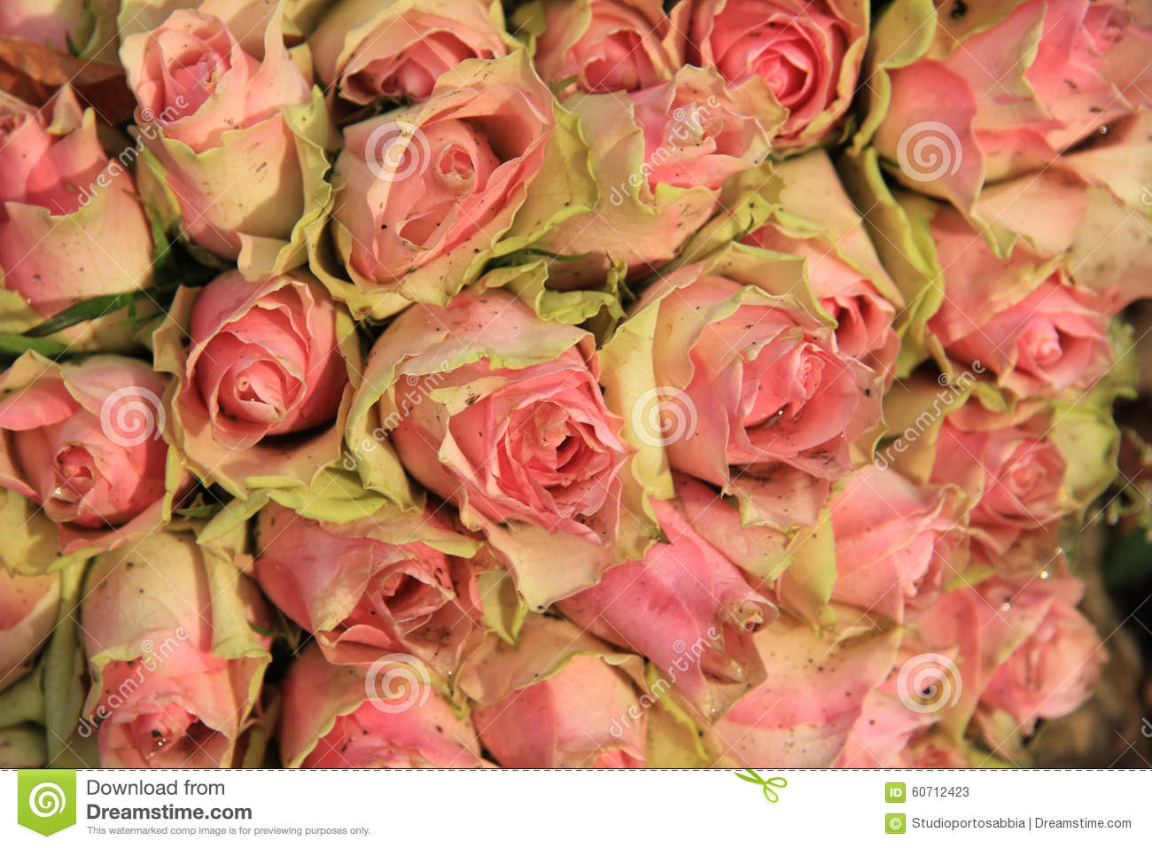 Wedding Decorations With Pink Roses Stock Image Image Of Petals
