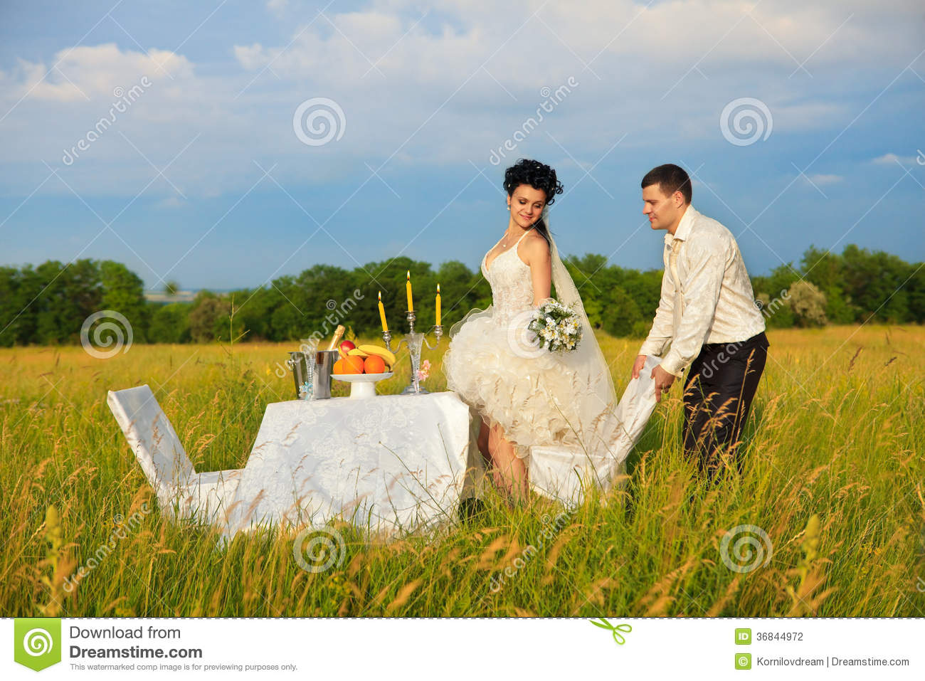 Wedding dinner on the field stock photo image 36844972 - Pose photo mariage ...
