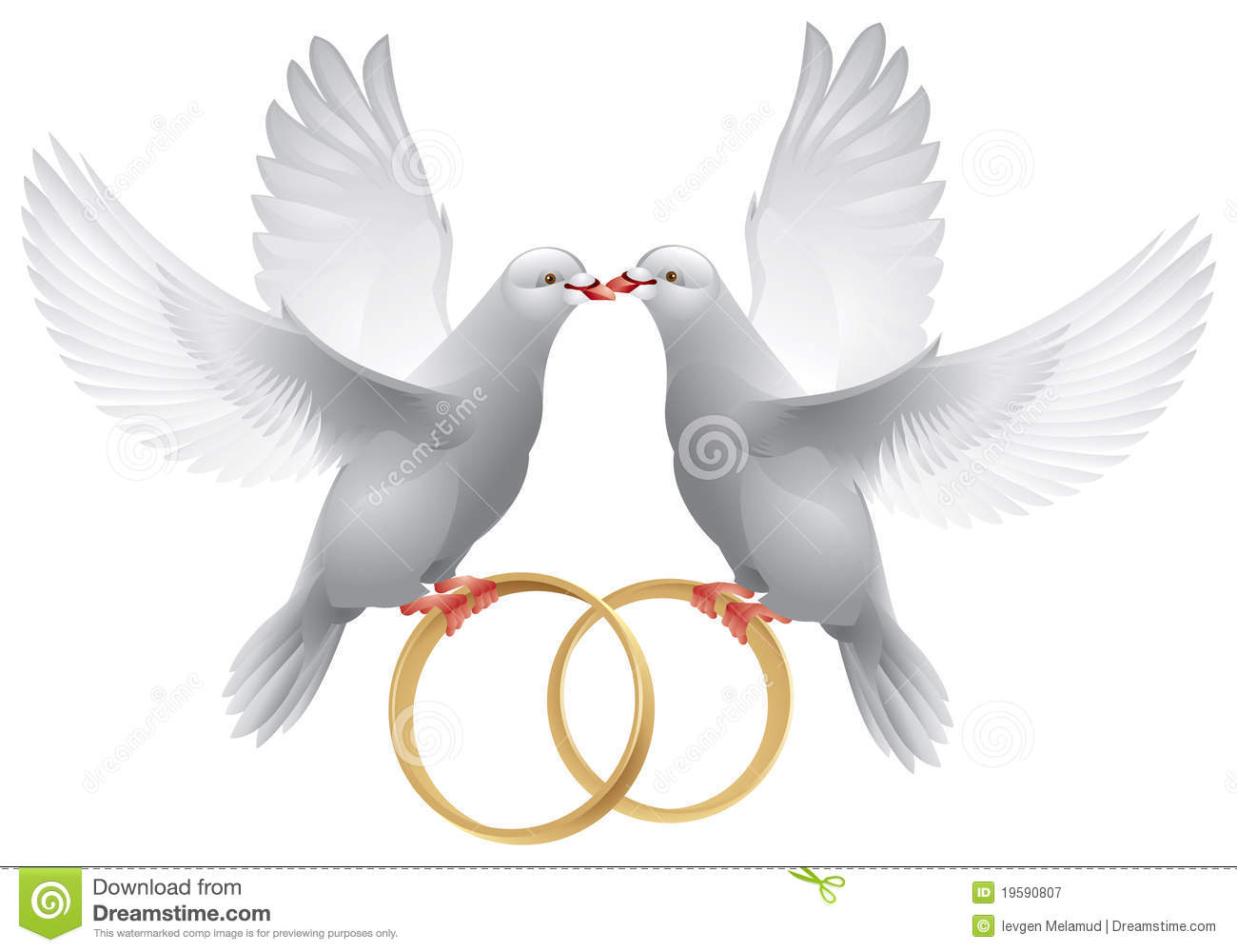 Wedding Doves With Rings Royalty Free Stock Photography
