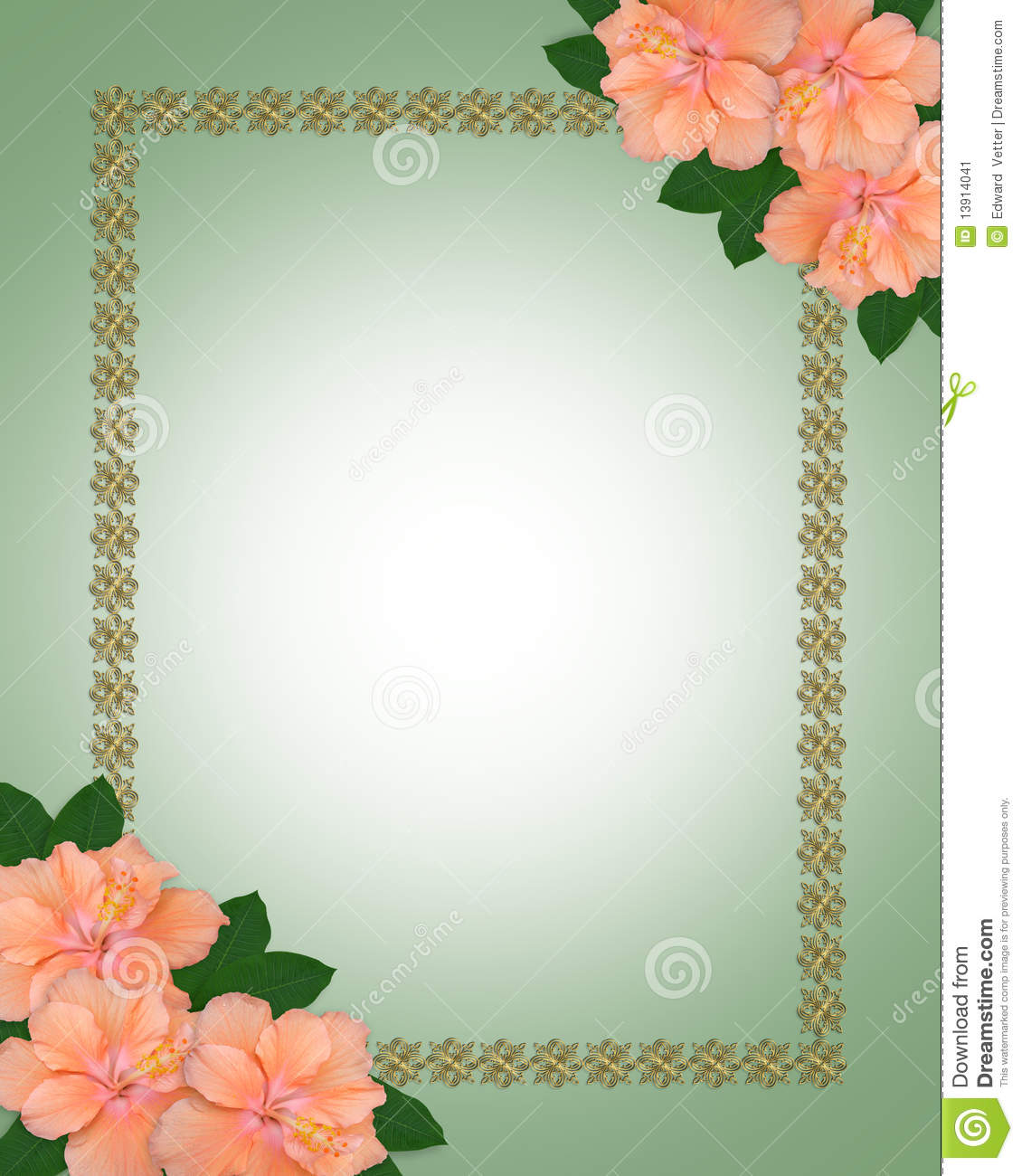 Wedding Invitation Border Hibiscus Stock Illustration ...