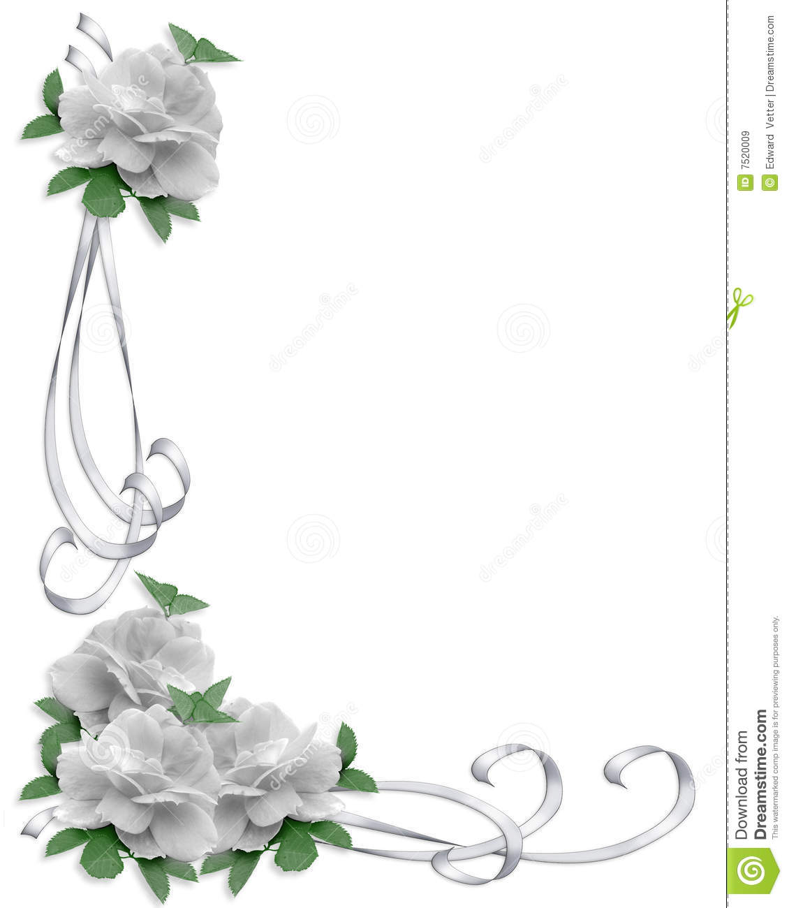 wedding invitation border white roses stock illustration