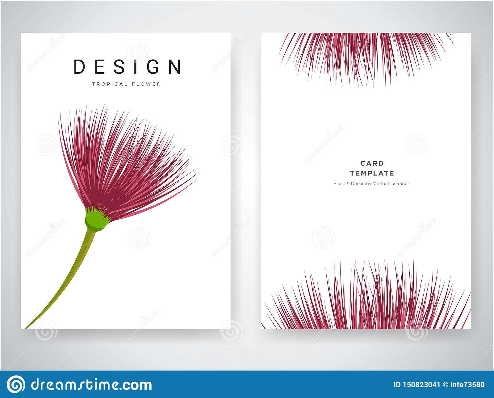 Wedding Invitation Card Design With Tropical Flowers Invite Thank You Rsvp Modern Card Design Tropical Bright Leaf Branches Stock Vector Illustration Of Natural Frame 150823041