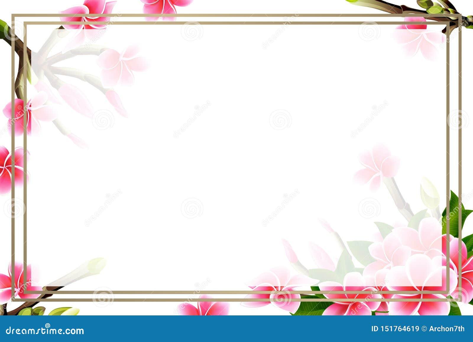 Wedding Invitation Card Floral Plumeria Frame And Lettering Postcard Template Stock Vector Illustration Of Bloom Florist 151764619